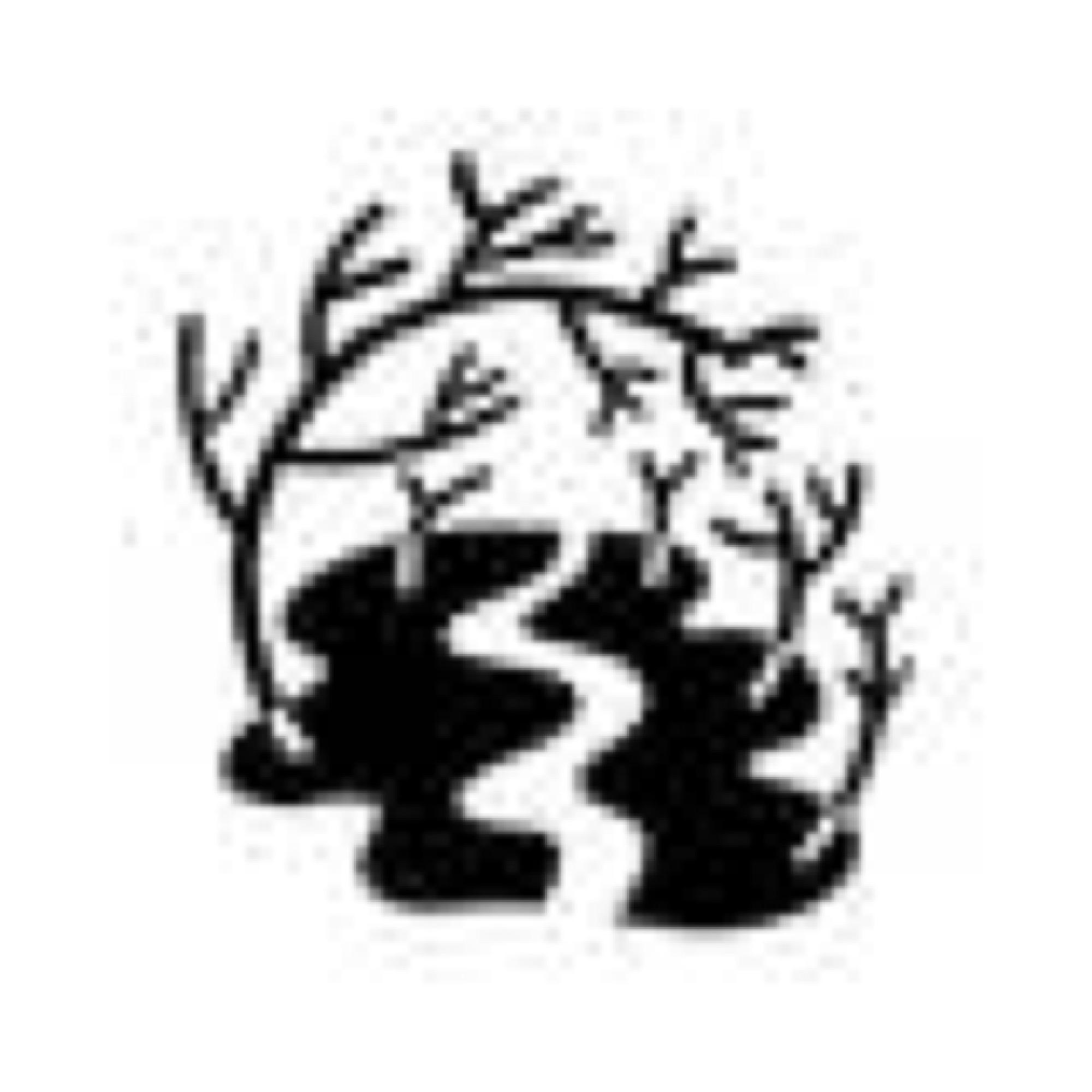 Färden genom mangroven, Leopard Förlag