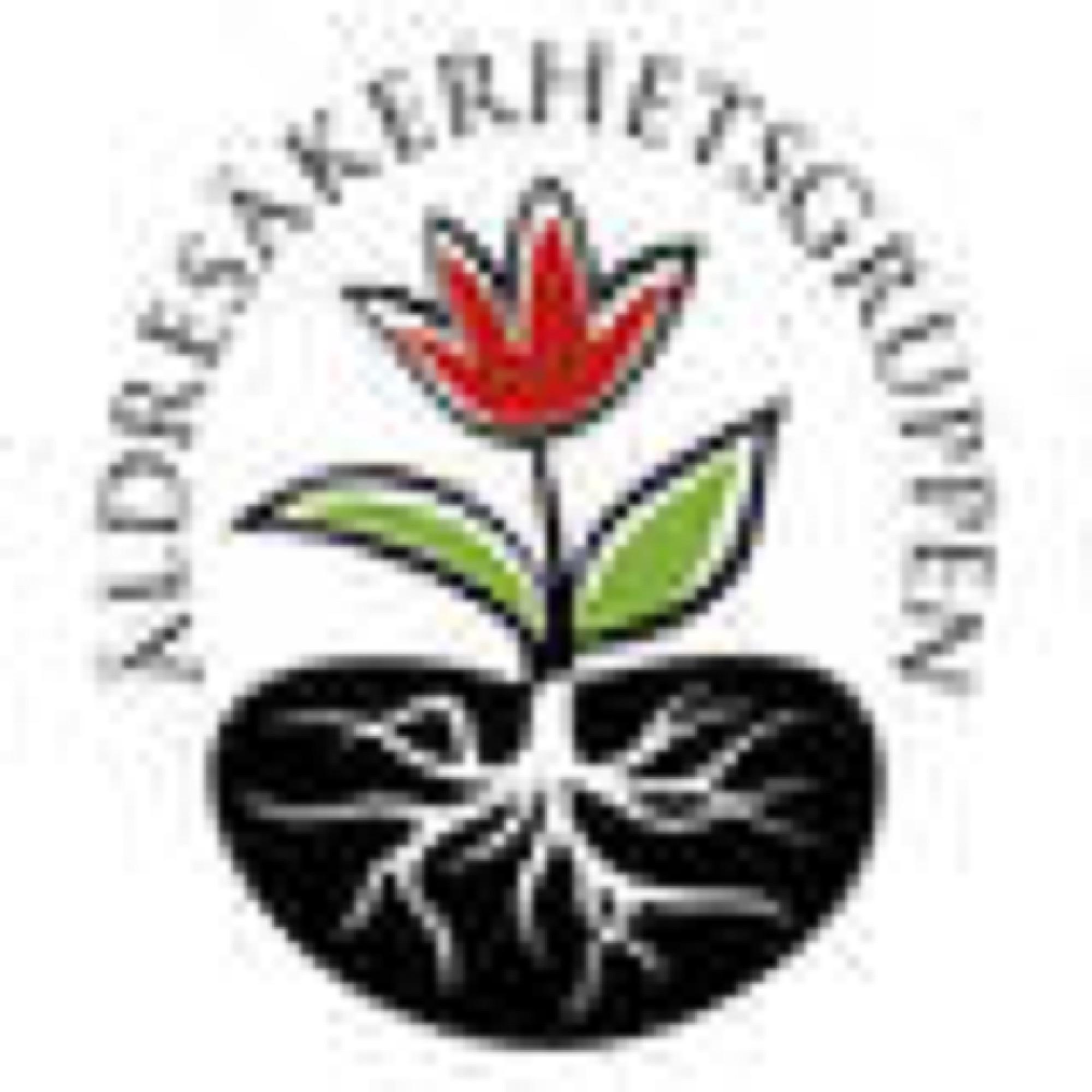 Logotyp till Äldresäkerhetsgruppen