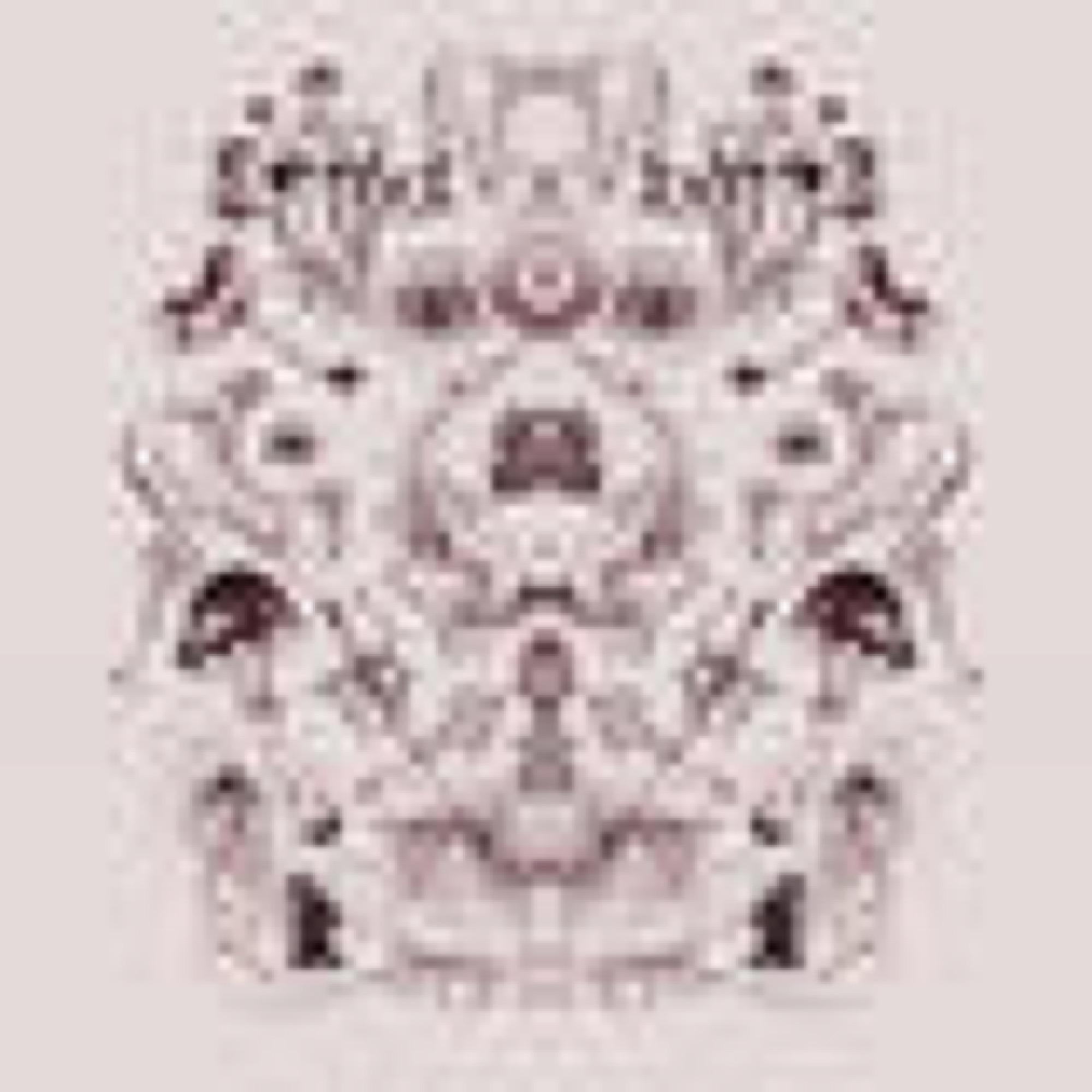 nucleus_print_2_sagamariah