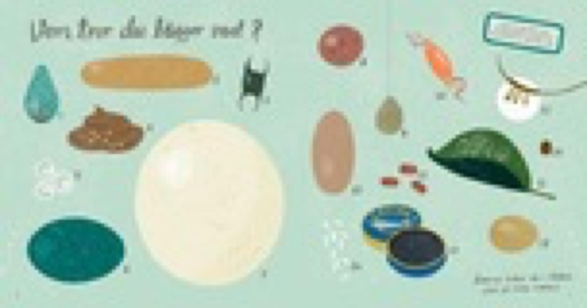 Book, Hårdkokta fakta om ägg