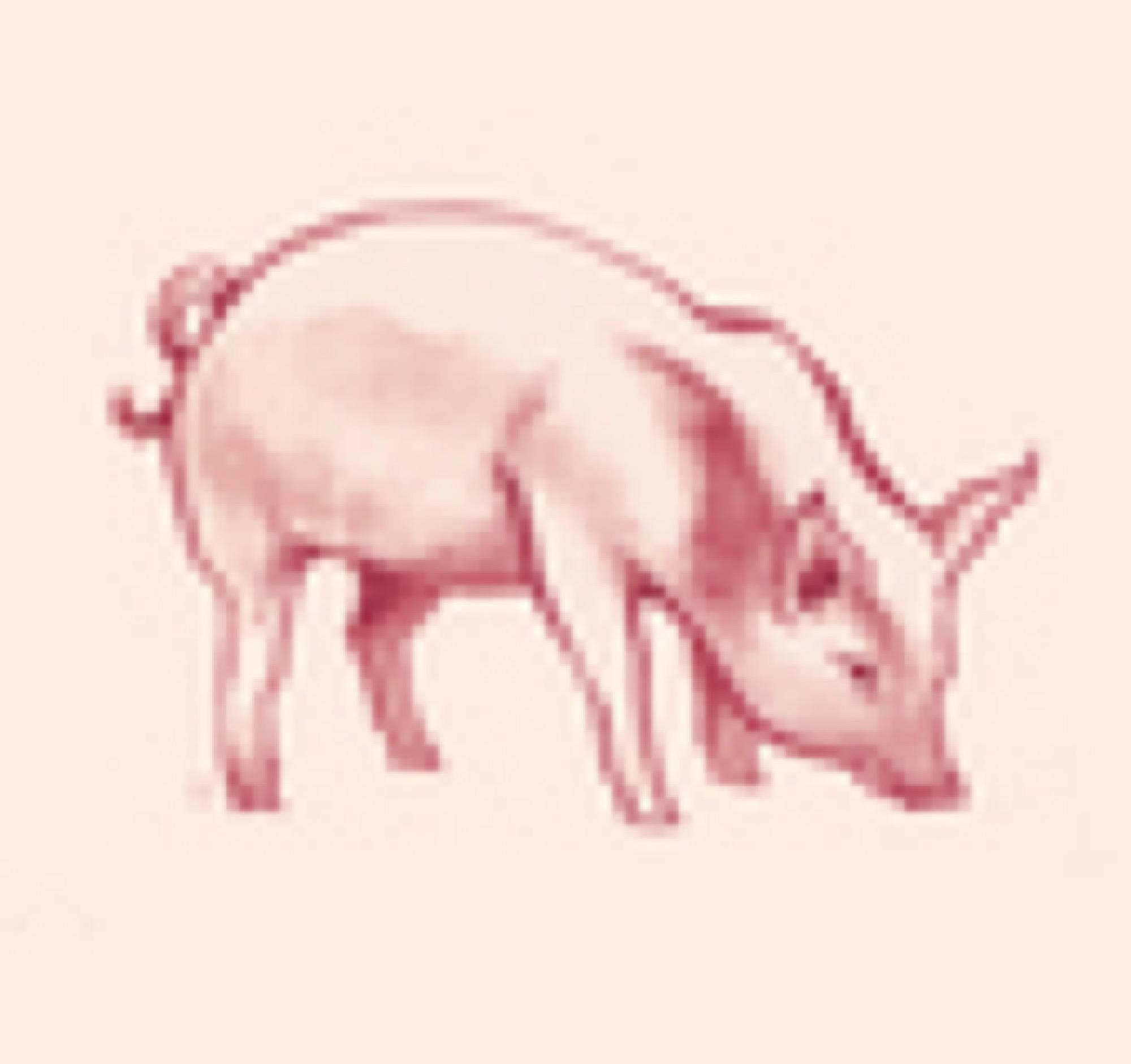 ica korv gris sagamariah 560px