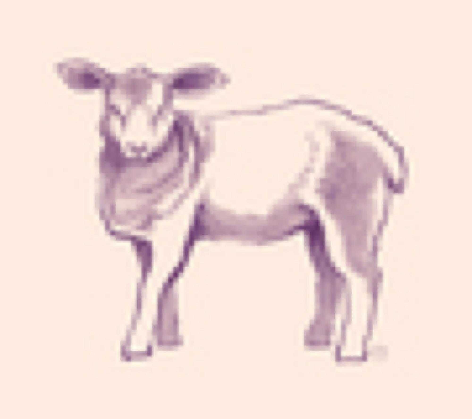 ica korv lamm sagamariah 1 560px