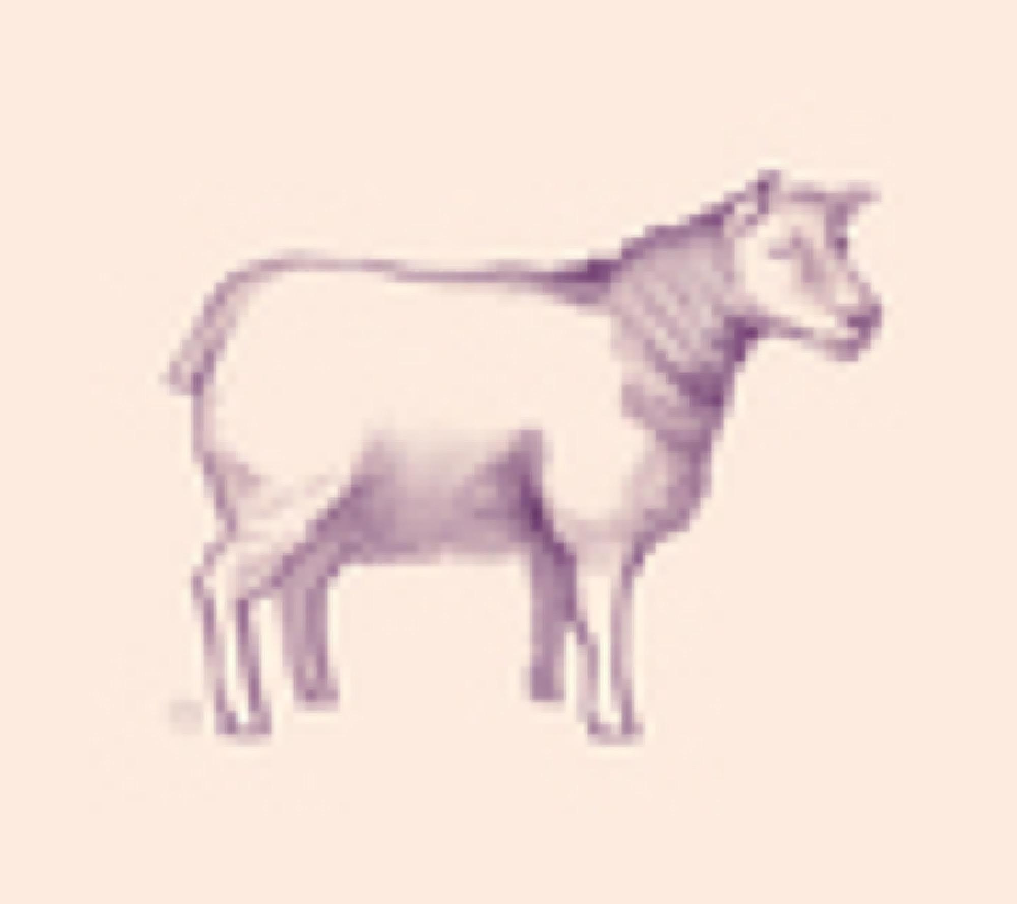 ica korv lamm sagamariah 3 560px