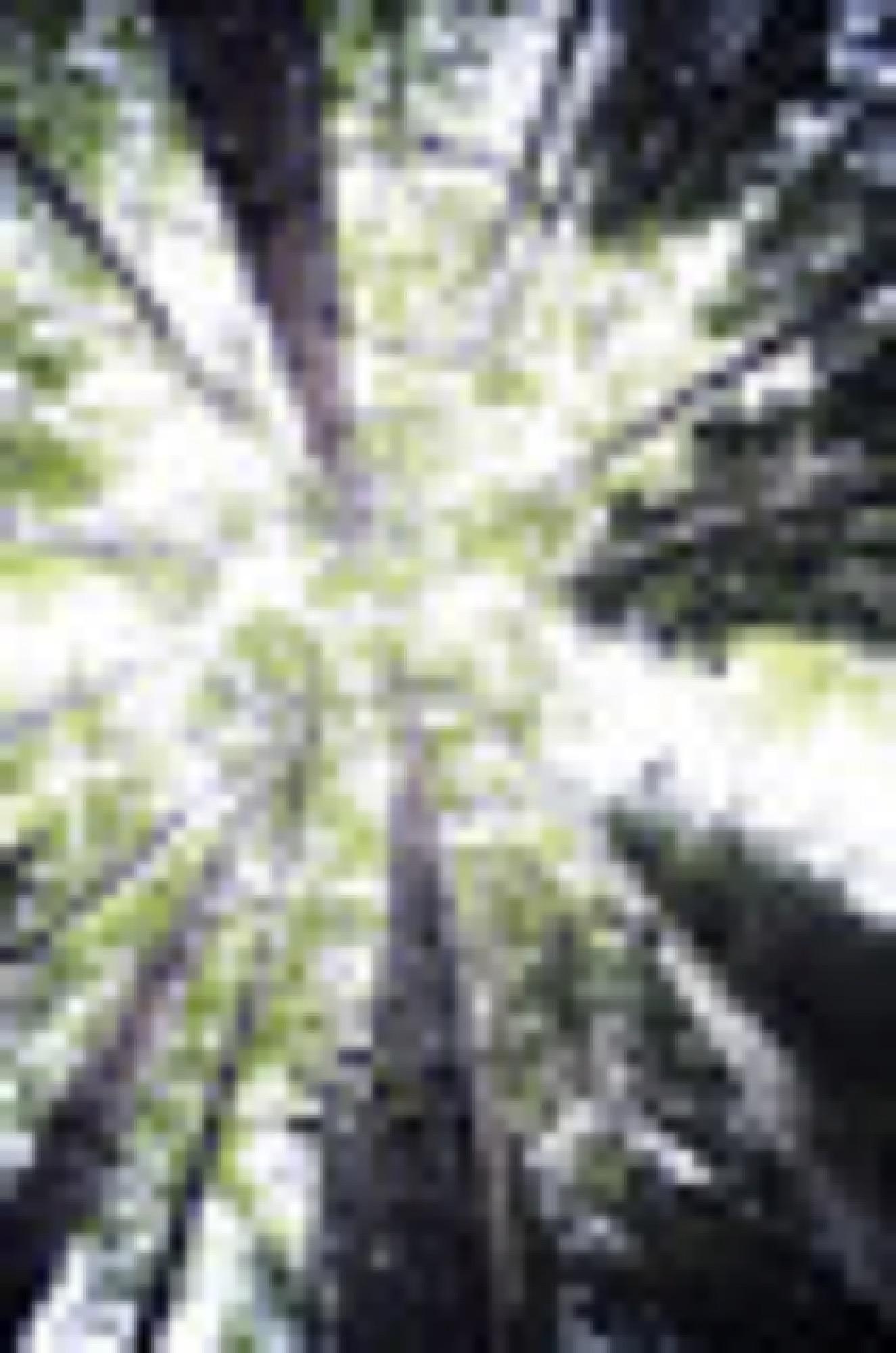 U2A1678