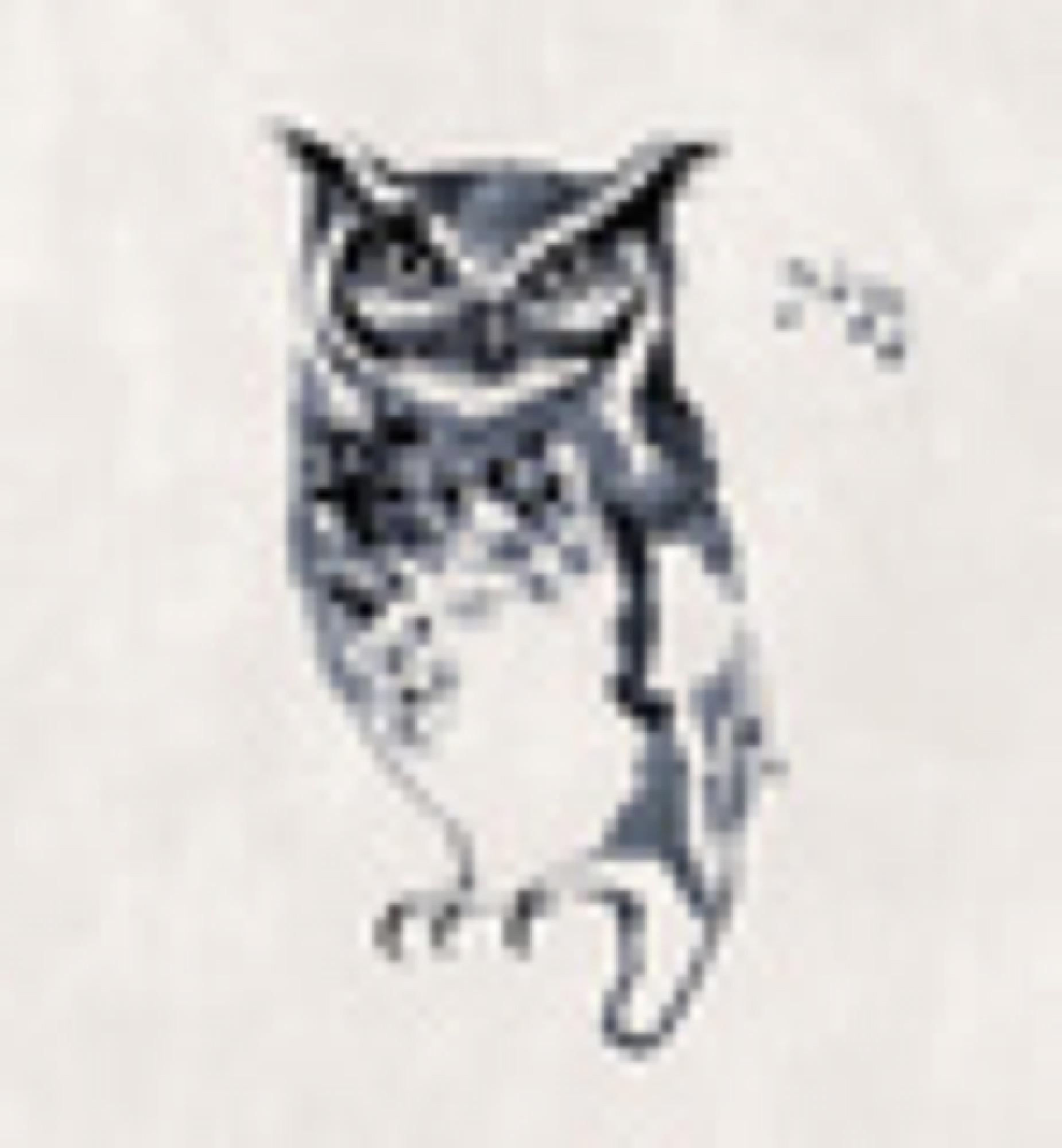 sagamariah_owl_3