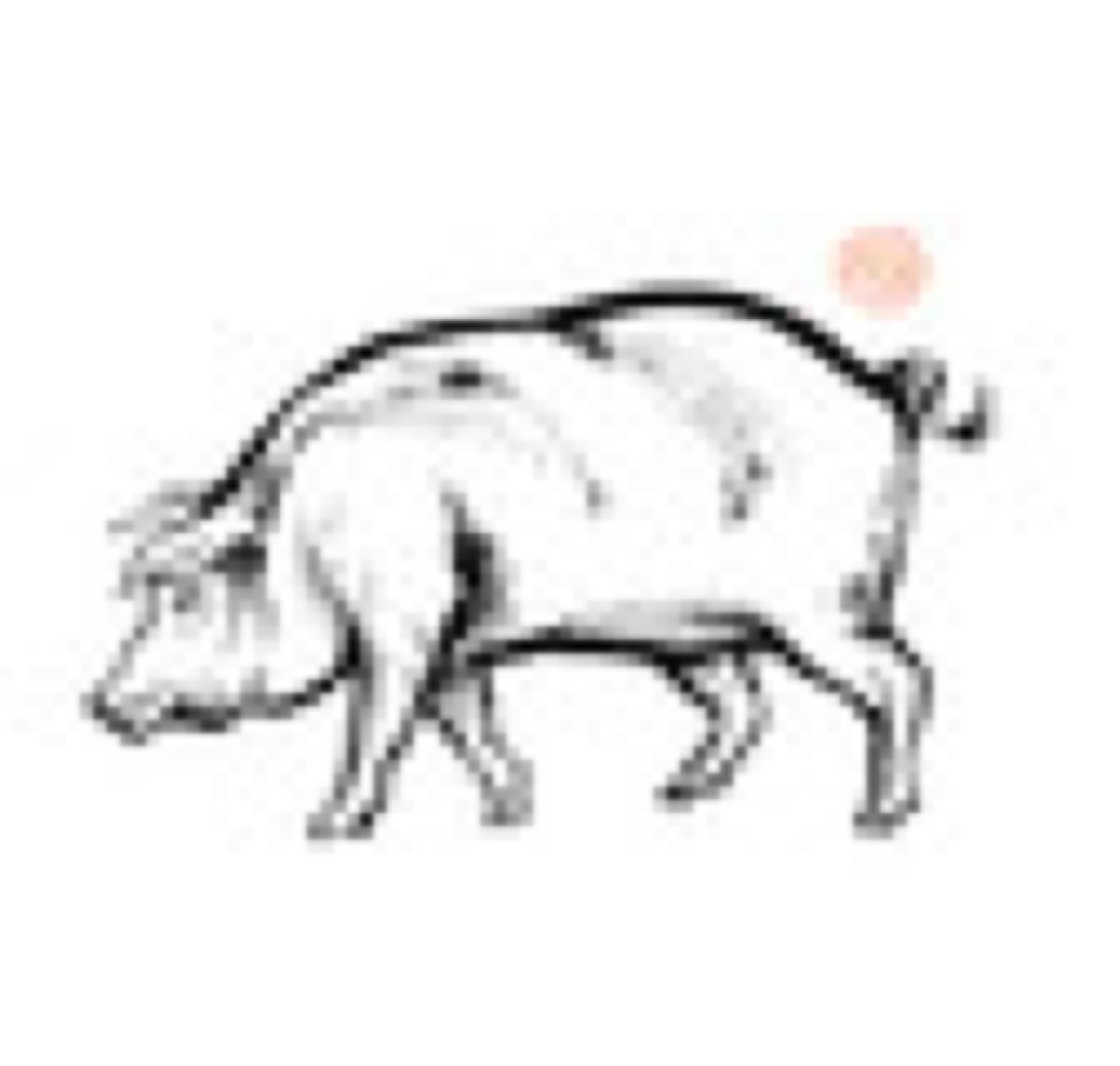 ICA Iberian pig 2 -sagamariah