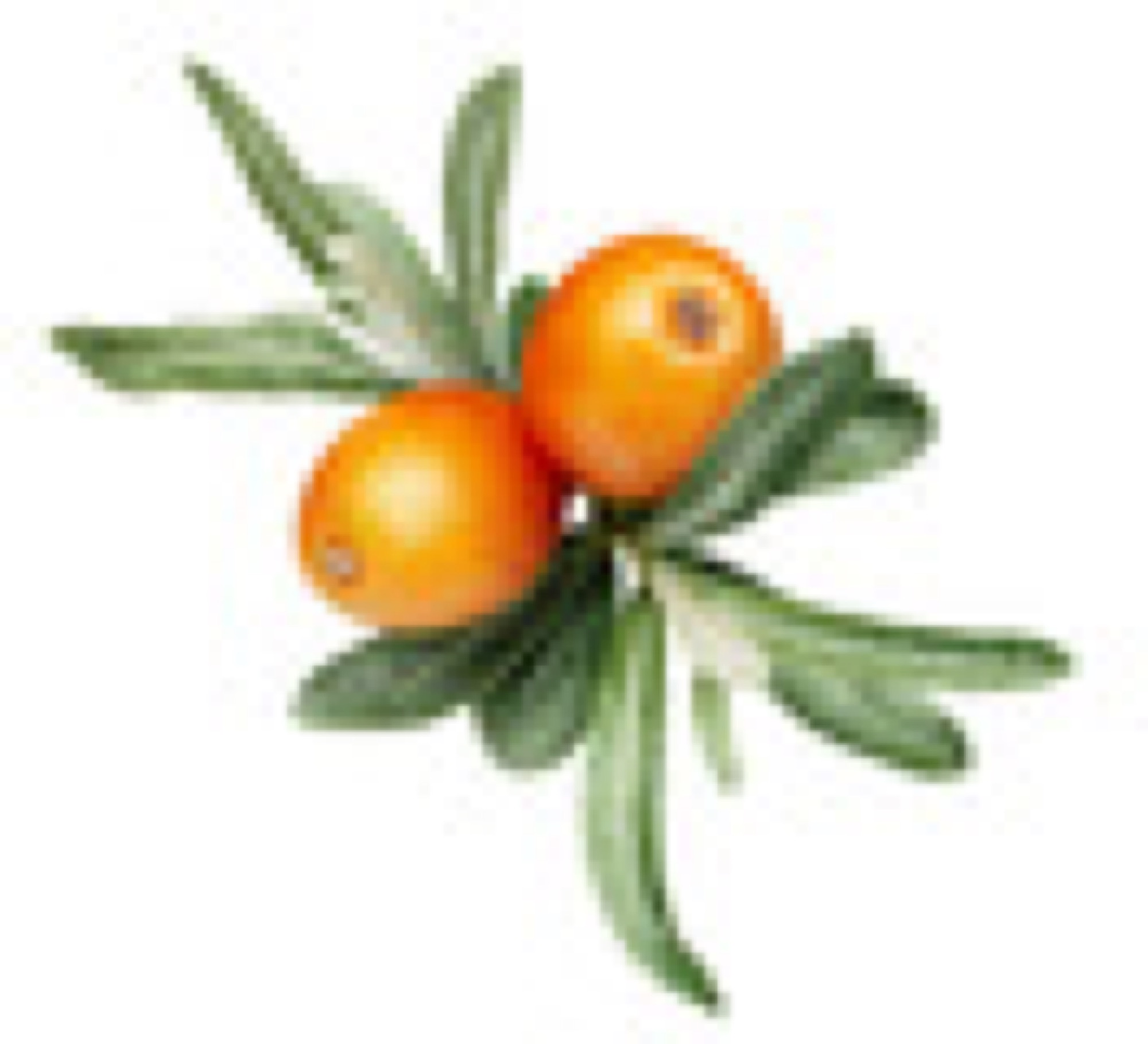 Lumene-Sea buckthorn