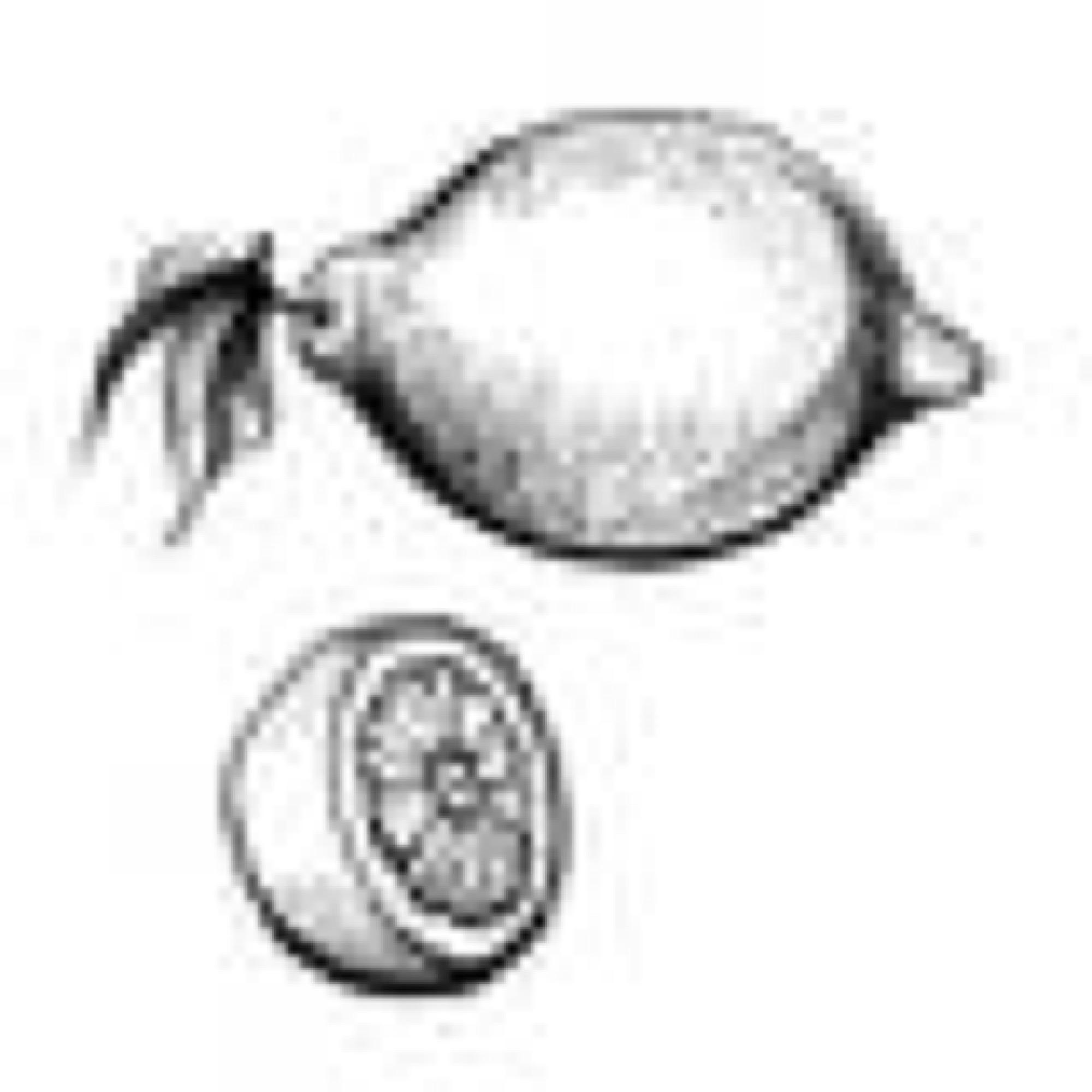 ica ratt enkelt citroner sagamariah