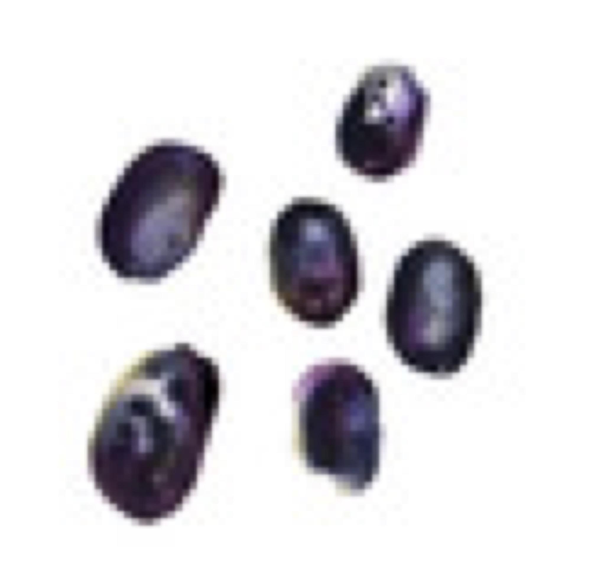 sagamariah zetas oliver svarta